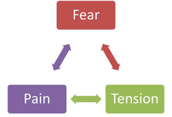 how fear, pain and tension work together yet against you